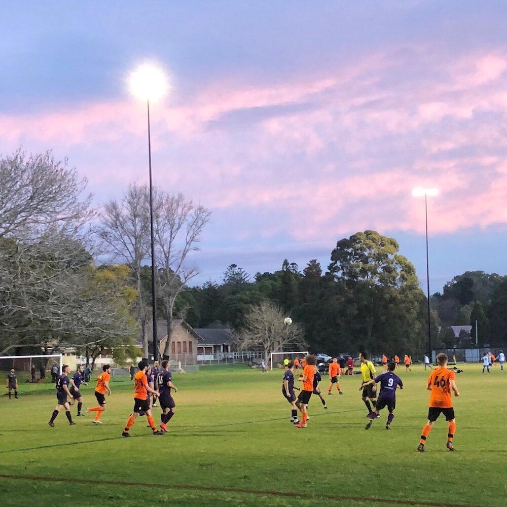Callan Park Field